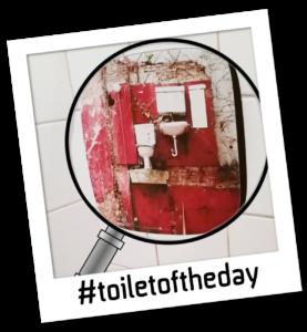 toiletoftheday