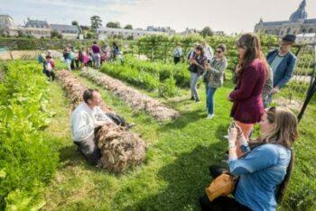 Frankreich nachhaltig erleben und über Gärtnern lernen