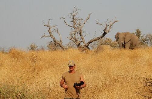 Wildtiere beobachten auf Reisen