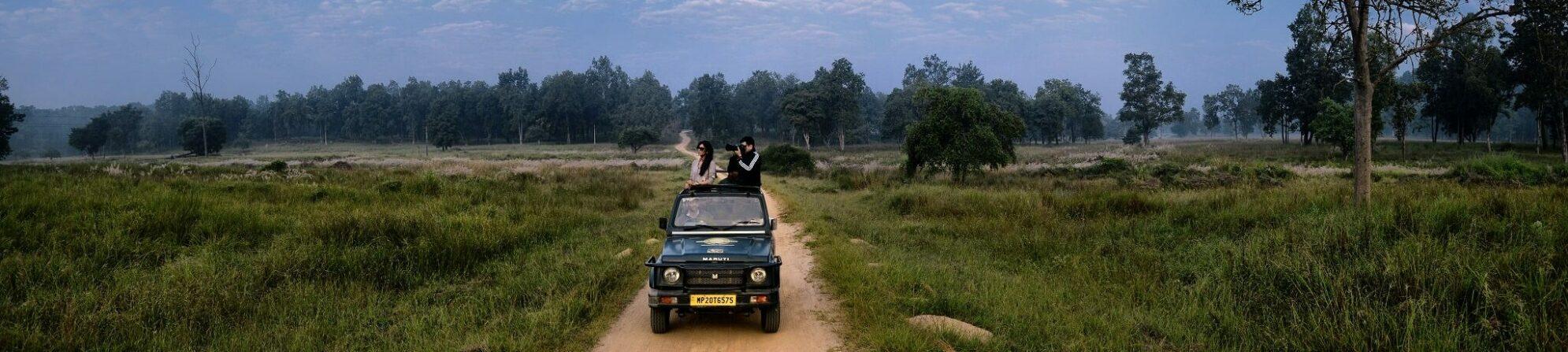 Pirschfahrt in Indien