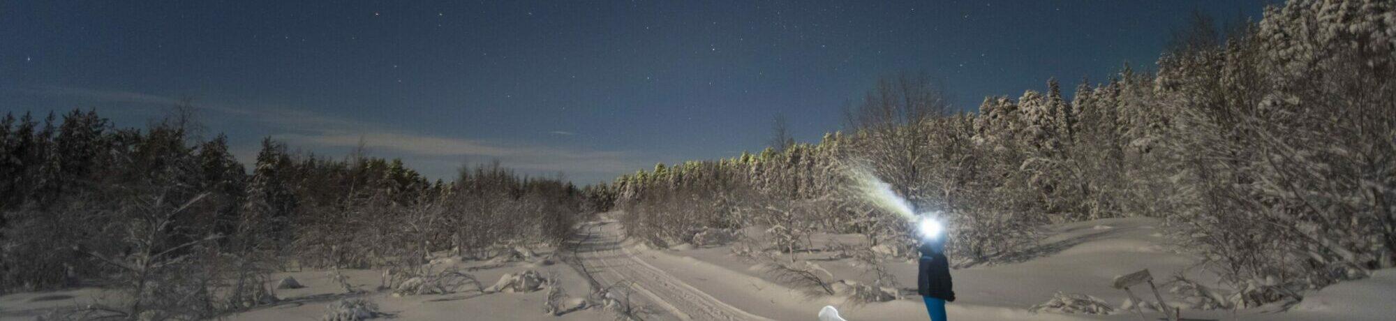 Mit Polarlichtexpress in den Norden Europas